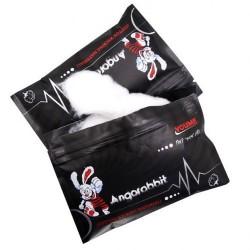 Coton Angorabbit