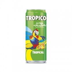 Boite Tropico Tropical 33 cl